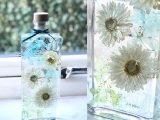 Japanese herbarium bottle